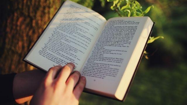 活字中毒の人の読書量