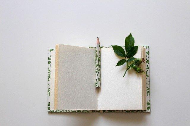 まとめ:読書環境を整えて、読書ライフを始めよう